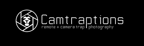 Camtraptions: Remote + Camera Trap Photography