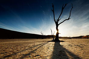 Silhouette at Deadvlei by Michael Toye