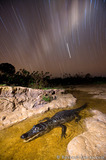 Caiman Star Trails