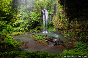 A beautiful waterfall in Amber Mountain National Park.
