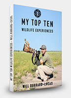 My Top Ten Wildlife Experiences