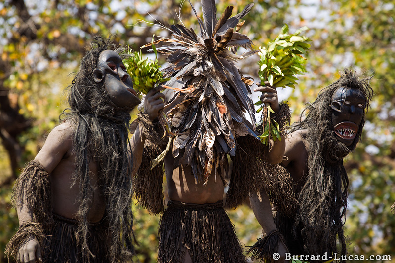 nyau dancers burrardlucas photography